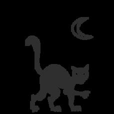 Black Cat (scary)