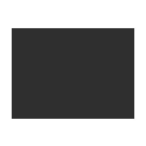 Santa Team Reindeer