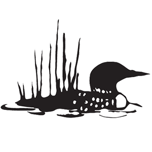 Loon (swimming duck)