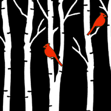 Birch Trees with Two Cardinals