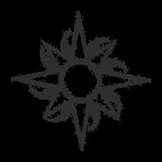 Sun (8 points)